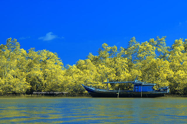 Kapal nelayan bersandar di kawasan konservasi mangrove Batu Karas.