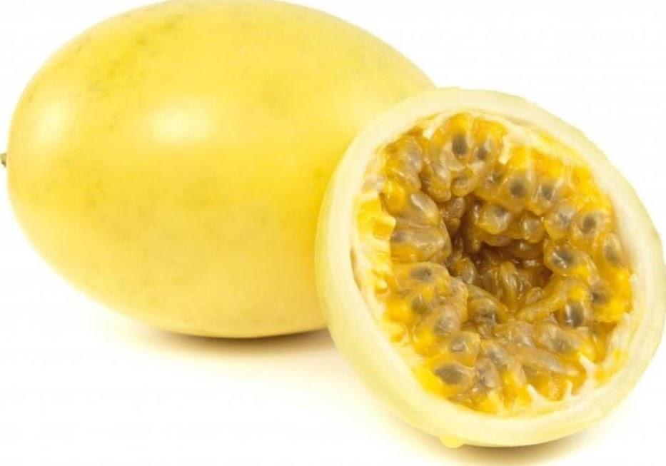 Bibit Benih Biji Buah Markisa Kuning Yellow Passion Fruit Kaya Manfaat Isi 10 Biji Sumatra Utara