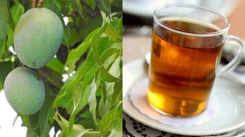 Chá de folha de manda: benefícios para a saúde geral do corpo