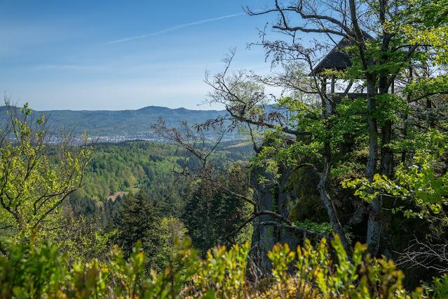 Premiumwanderweg Murgleiter | Etappe 1 von Gaggenau nach Gernsbach | Wandern nördlicher Schwarzwald 18