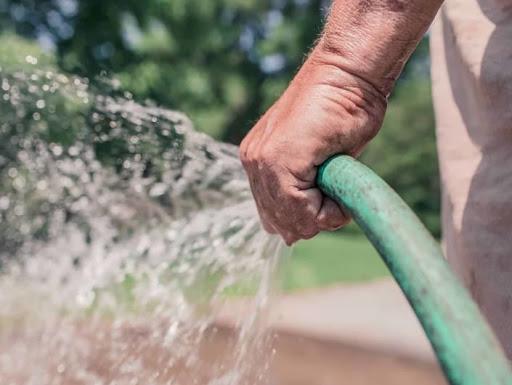 اشغل نفسك في العطلة بالزراعة ... 8 نصائح لنتيجة أفضل (7)