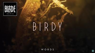 Birdy - Words ( Blonde #Remix )