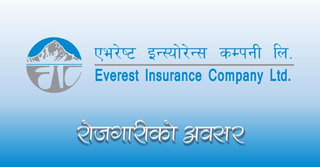 everest insurance