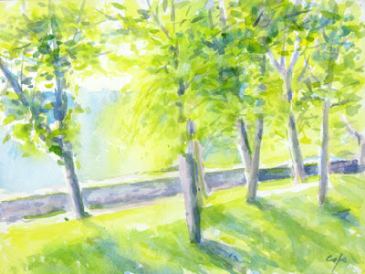 watercolour of a lime grove at chateau de beduer
