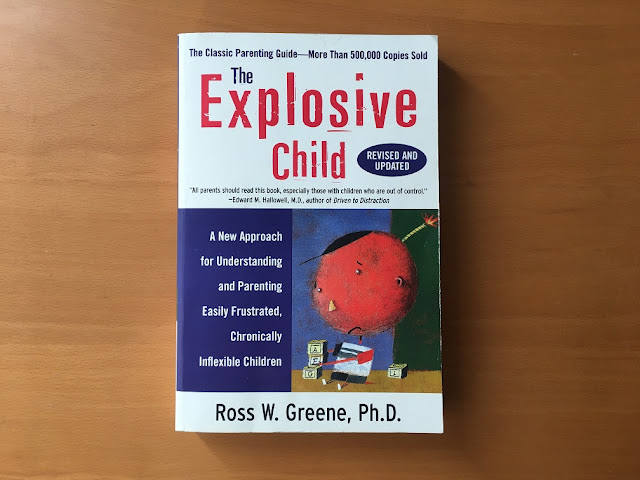 the explosive child book cover
