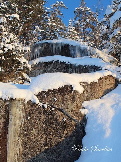 Jääpuikkoja Lintuinvuoren kalliolla