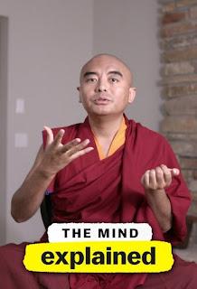 The Mind Explained