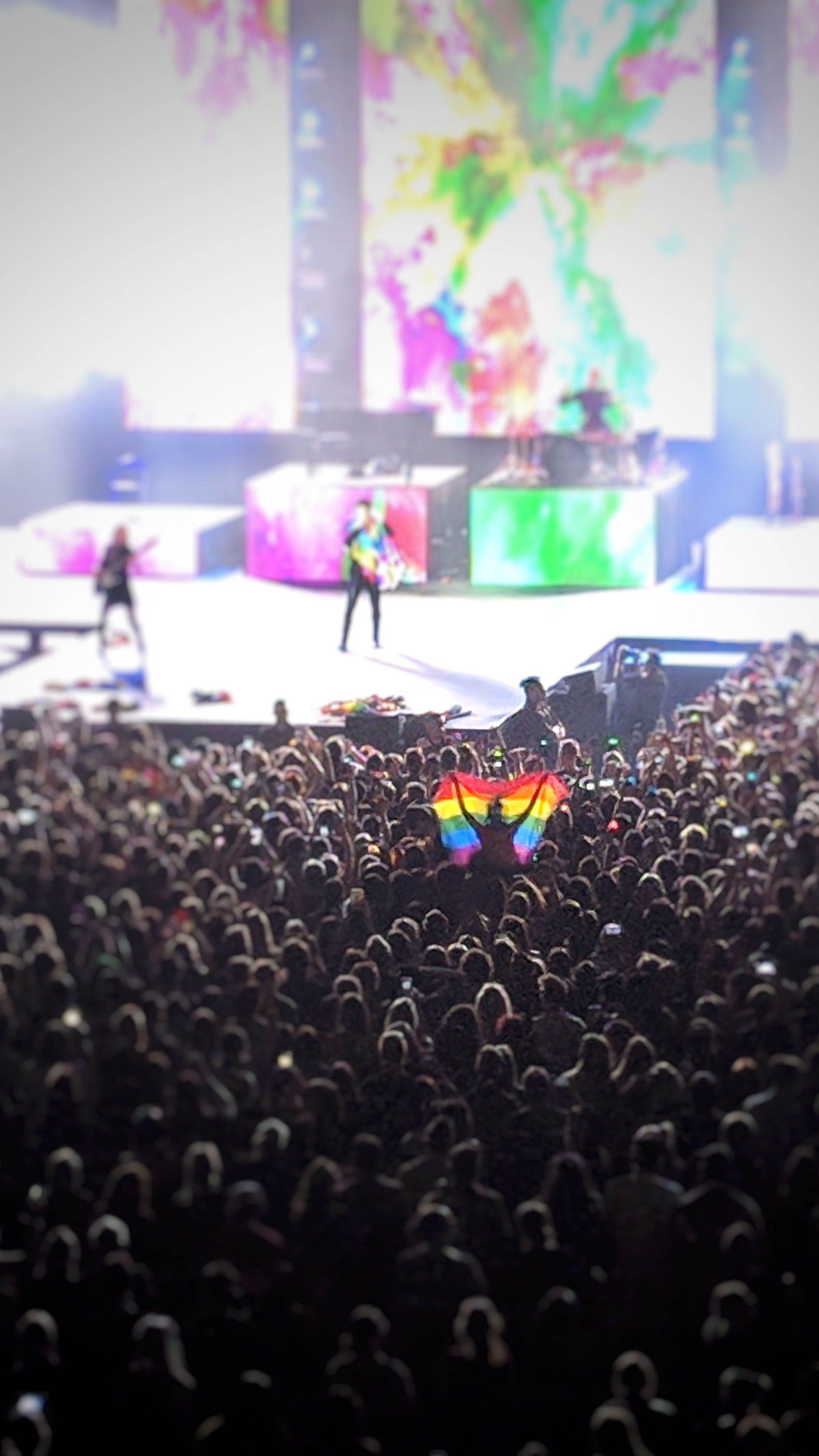 Panic! At The Disco and a fans Pride flag