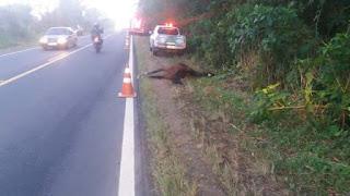 Grave acidente com vitima fatal na SP-139 entre Sete Barras e Registro-SP