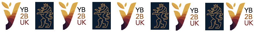 YB2B UK  venture and development capital
