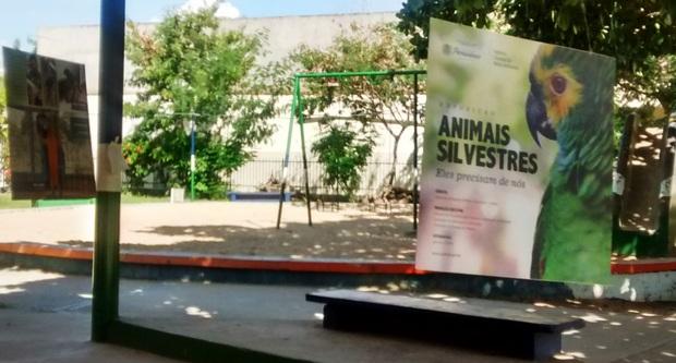 Mostra fotográfica sobre animais silvestres está sendo realizada no Parque Florestal de Santa Cruz
