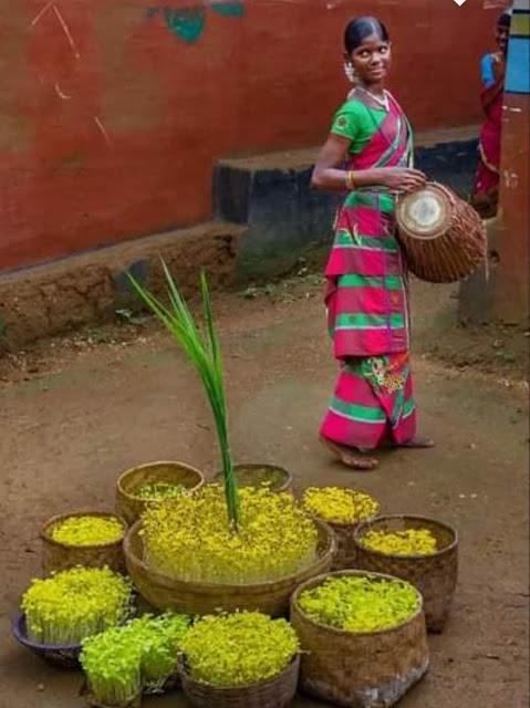 Adivasi festival