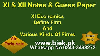 Define Firm And Various Kinds Of Firms