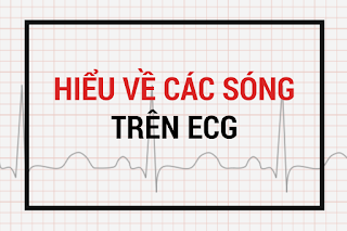 Điện tâm đồ cơ bản, Học điện tâm đồ cơ bản, các sóng trên điện tâm đồ, ECG cơ bản.