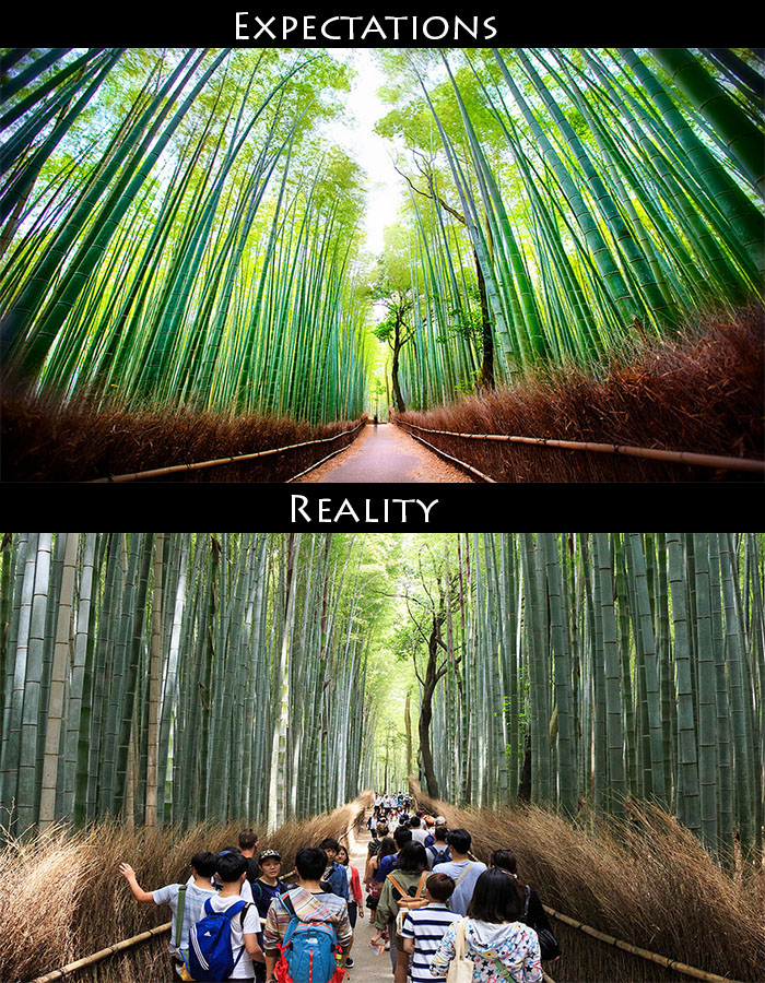 Travel Expectations vs reality