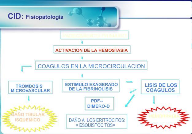 Anemia Hemolitica Intracorpuscular Pdf