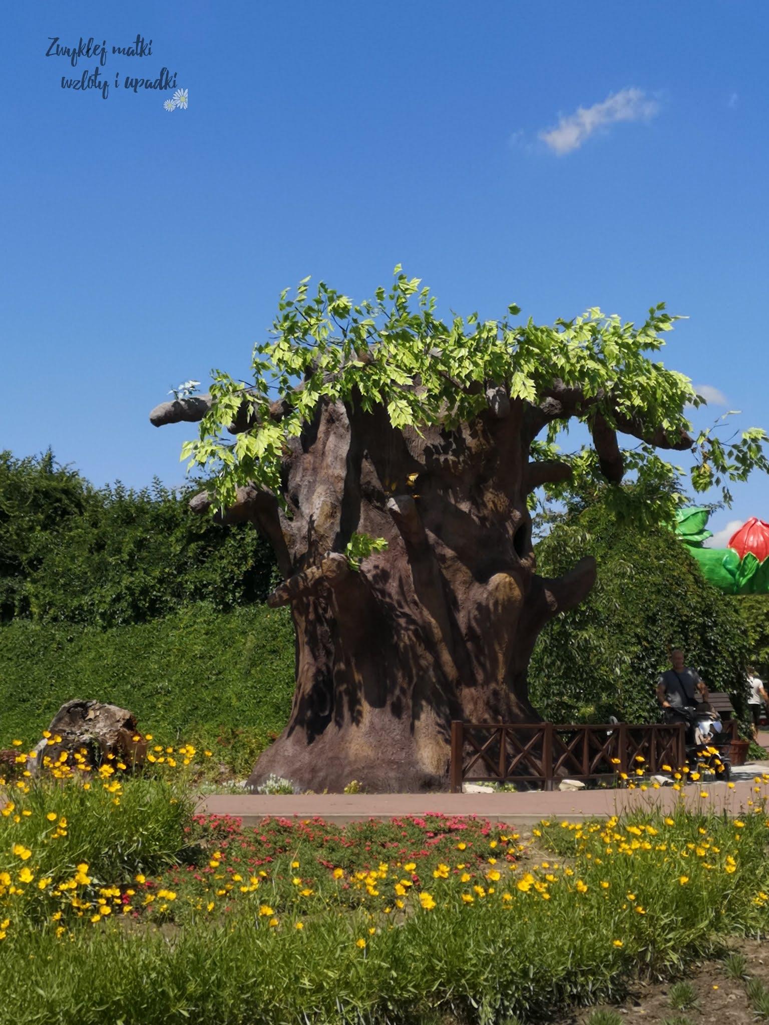 Magiczne ogrody - dla kogo? Czy dwunastolatka nie będzie się tam nudzić