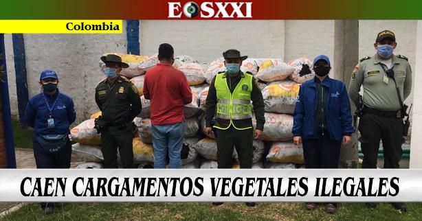 Decomisados cargamentos ilegales en Cundinamarca y Boyacá