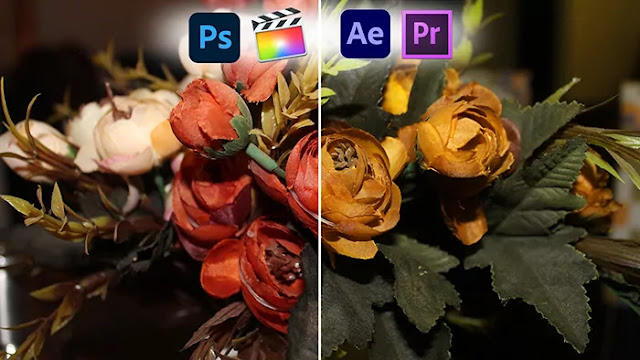 colorful video luts free download