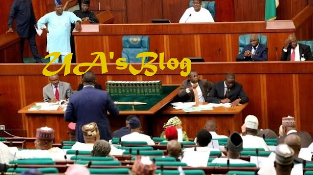 Reps Move To Bar 70-Year-Old Candidates From Contesting Elections