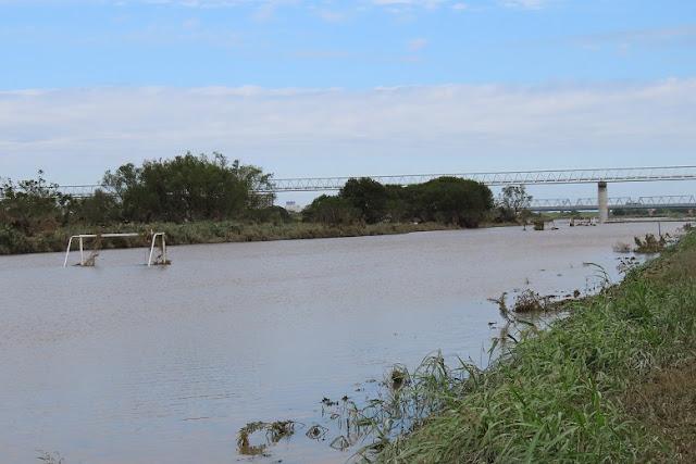 江戸川増水後4日目2