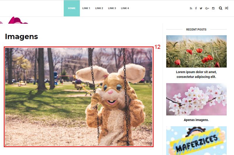 Imagem mostrando a visualização da página Imagens, com a imagem carregada em destaque.