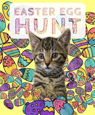 easter-egg-hunt-cat-kitten