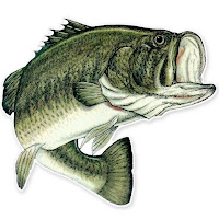 Best Bass Fishing Lakes in Florida