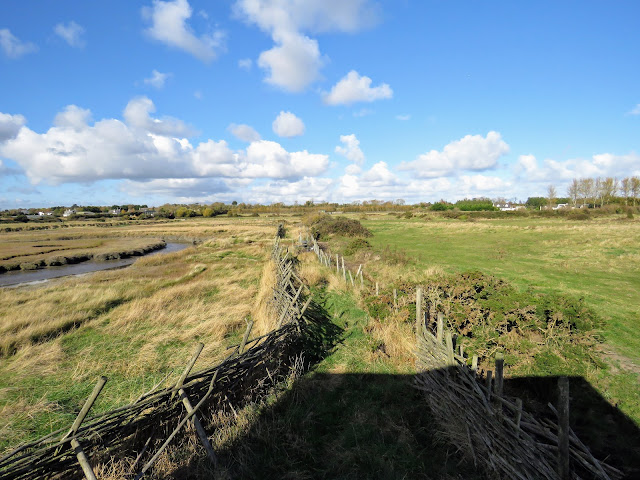 Rogerstown Estuary walk to North Hide