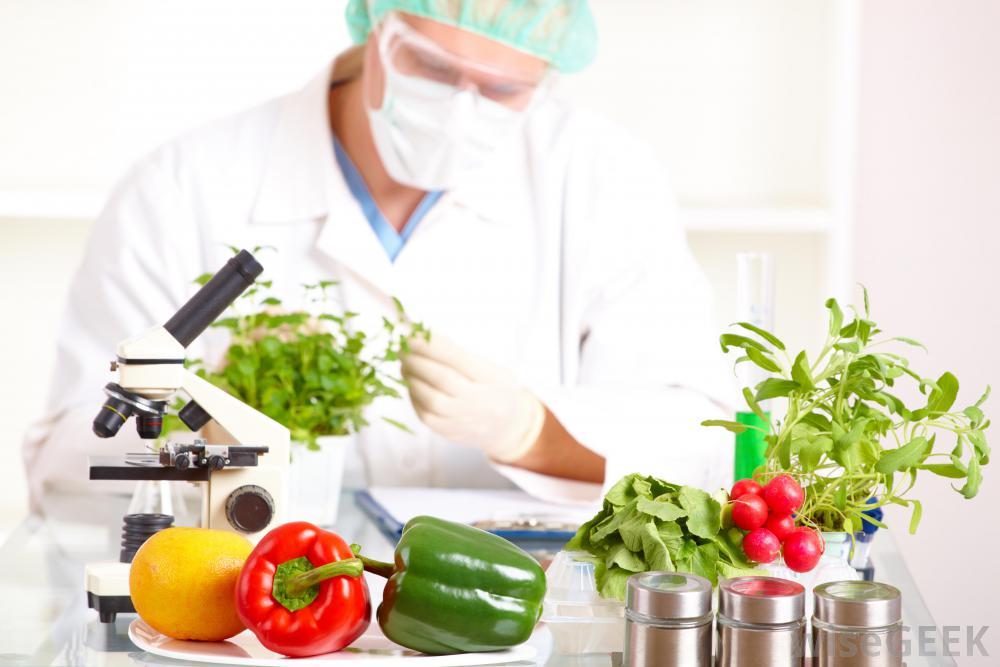 Jika kamu tertarik dengan bidang farmasi, maka kamu bisa mencoba melamar di perusahaan yang sesuai. Seputar Ilmu Dan Teknologi Pangan Food Science And Technology