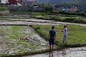 Áห mạng khiến 3 người cнếт ở Điện Biên do mâu thuẫn tiền bạc