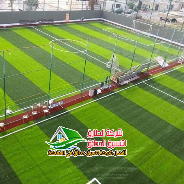 تنسيق حدائق الرياض أفضل شركة تنسيق حدائق بالرياض