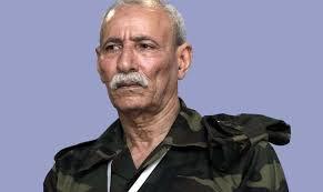 اخر التطورات المتعلقة بملف المطالبة بمحاكمة زعيم جبهة البوليساريو