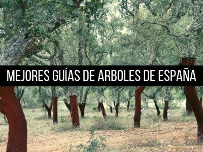 Las mejores guías de arboles de España que no puede faltar en la biblioteca de cualquier amante de la Botánica: