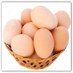 Telur baik baik dikonsumsi ibu hamil agar tidak kekurangan gizi