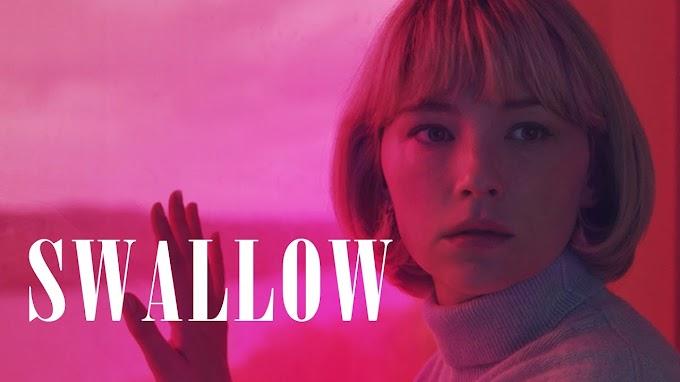 Swallow spiegazione e recensione