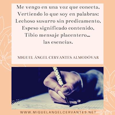 poema-escribir-eyacular--miguel-angel-cervantes