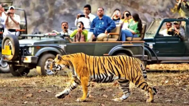 Rishikesh Tourism(2020), Best vacation spots of Rishikesh