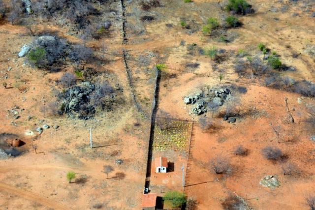 123 municípios de Pernambuco correm risco de desertificação