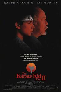 The Karate Kid Part II (1986) (Dual Audio) (Hindi-English) 720p