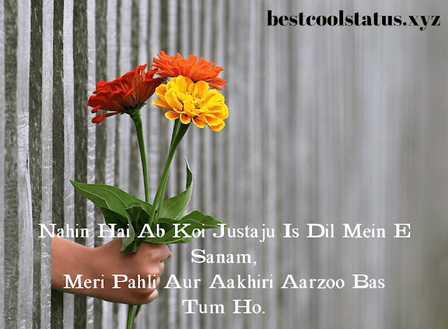 Latest Shayari For Love, True Love Status & Quotes, Love Images