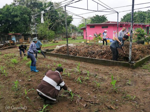 MUNDO: Este emprendimiento ayuda al medioambiente y a sus trabajadores.