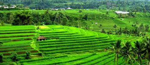 5 Tempat Wisata di Bali Yang Harus Di Kujungi