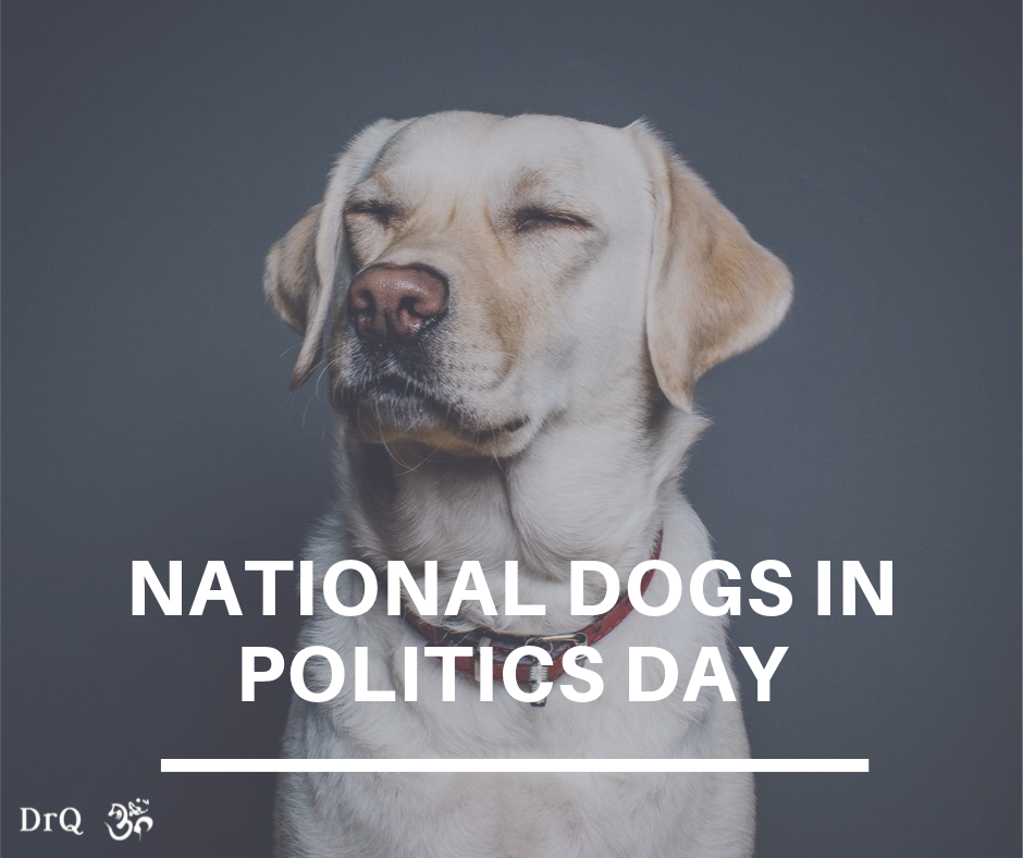 National Dogs in Politics Day Wishes Images download