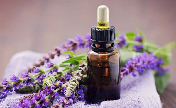 What are the benefits of sage oil for the body?