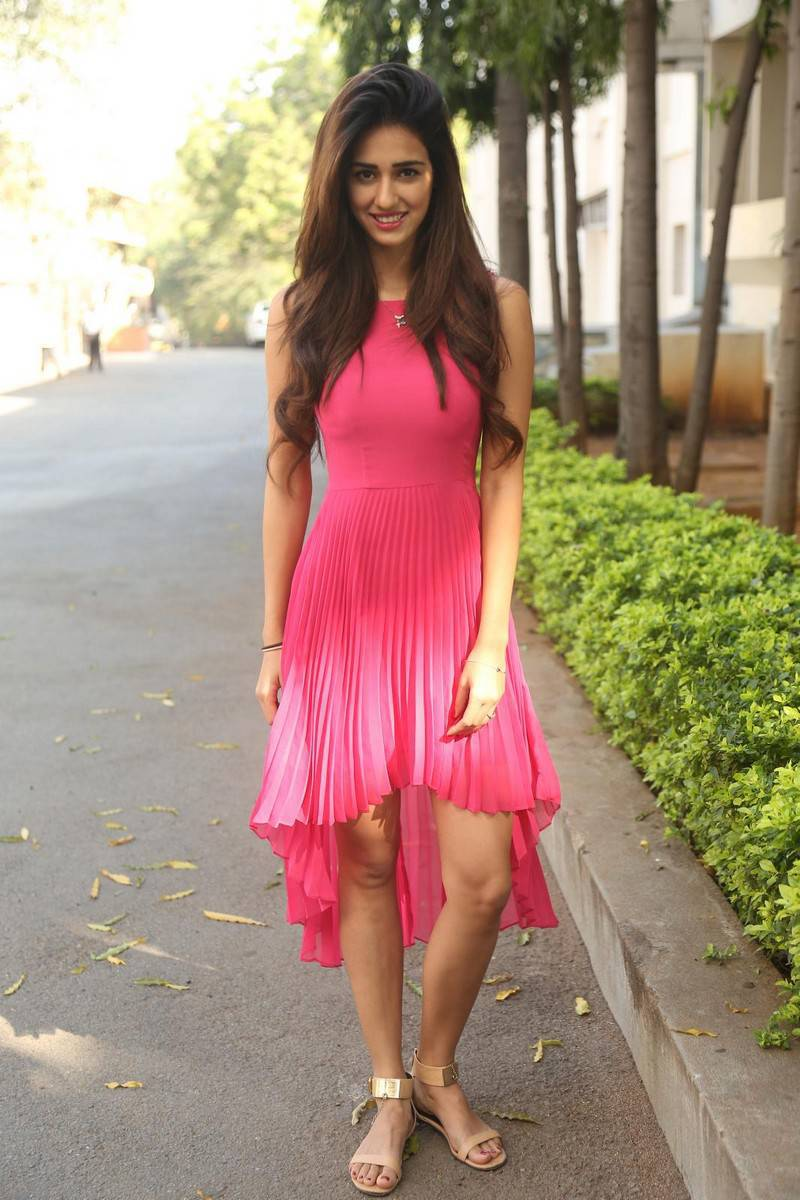 Actress Disha Patani Long Hair Stills In Pink Dress