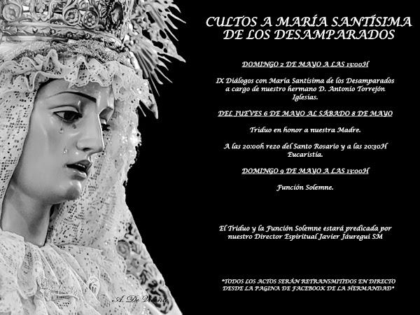 Cultos a María Santísima de los Desamparados de Cádiz