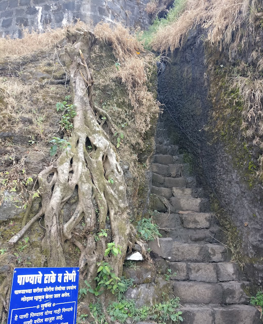 Tikona fort trek, entrance gate