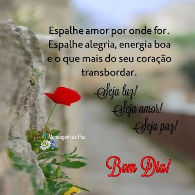 Espalhe amor por onde for.   Espalhe alegria, energia boa   e o que mais do seu coração transbordar.  Seja luz!  Seja amor!  Seja paz!  Bom Dia!