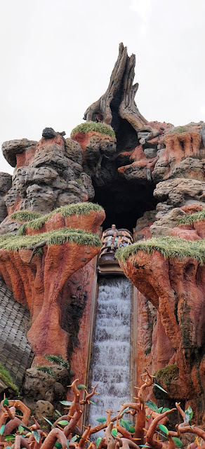 Disney World Magic Kingdom Splash Mountain